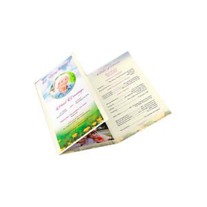 Cheap Flyers And Posters Custom Paper Advertising Promotional DL Flyer